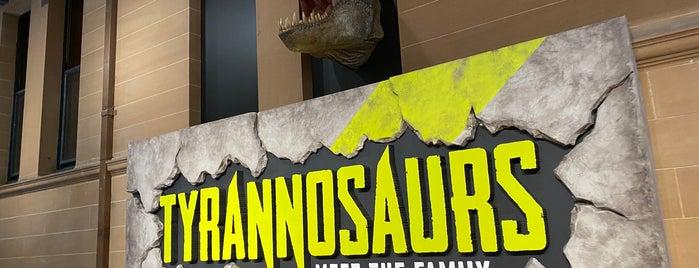 Jurassic Lounge is one of Australia - Sydney.