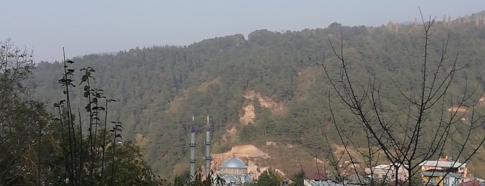 Doğancı Köy Sofrası is one of Posti salvati di Şebnem.