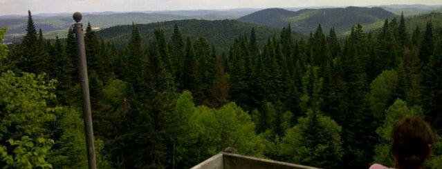 Montagne Noire is one of สถานที่ที่ Tristan ถูกใจ.