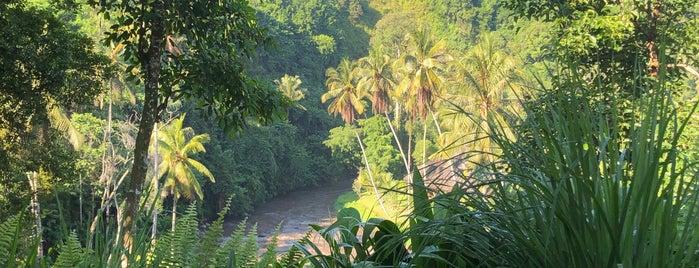 Kubu is one of Indonesia.