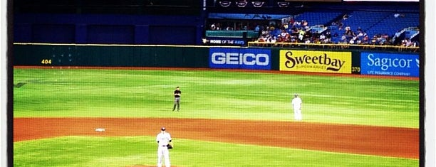 Tropicana Field is one of MLB Ballparks.