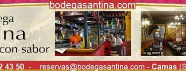 Bodega Santina is one of Lugares Favoritos . Favorites Places.