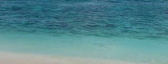 Sunday's Beach Club is one of Bali.