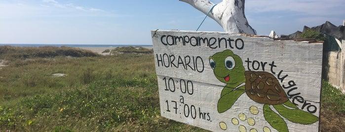Santuario Tortuguero Puerto Arista is one of Tempat yang Disukai Ilse.