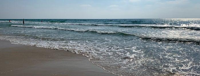Sidney Ali Beach is one of ISRAEL.