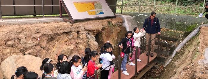 国指定天然記念物 丹那断層 (丹那断層公園) is one of 伊豆.