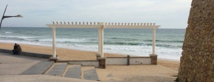 Praia dos Beijinhos is one of Orte, die MENU gefallen.