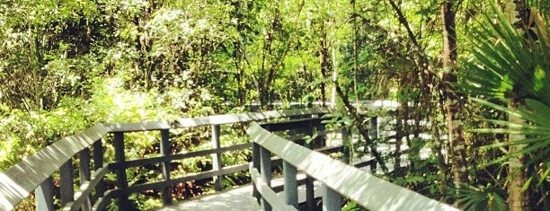 Fern Forest Nature Center is one of Miami with JetSetCD.