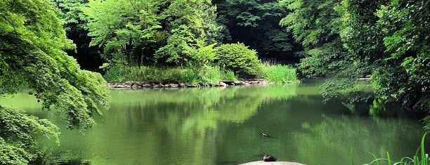 Sanshiro Pond is one of Japan.