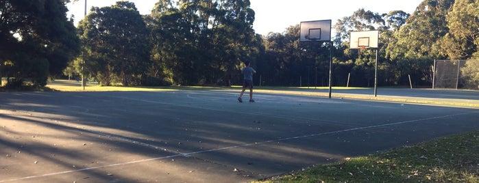 Strathfield Park is one of Lugares favoritos de Darren.