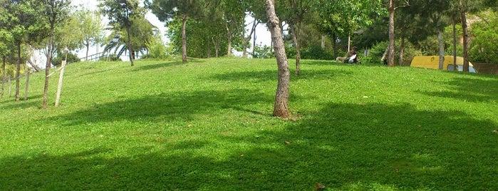 Parc de la Primavera is one of Ruta a Sants-Montjuïc. La ruta verda.