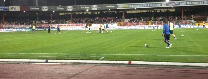 Mersin Tevfik Sırrı Gür Stadı is one of Stadyumlar.