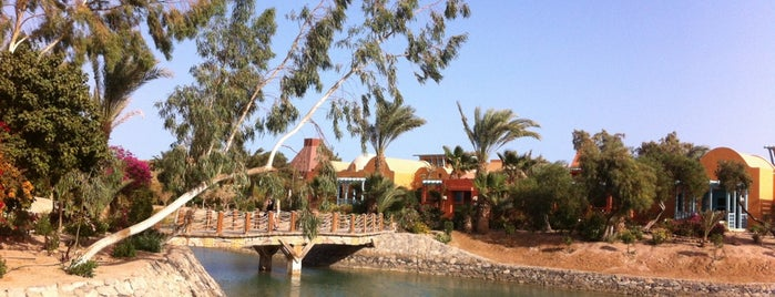 Sheraton Miramar Resort El Gouna is one of shakira.