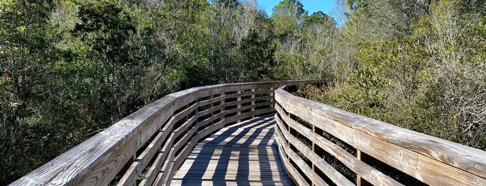 New Tampa Nature Park is one of City of Tampa Parks.