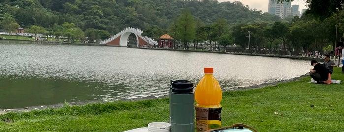 Dahu Park is one of Taipei.