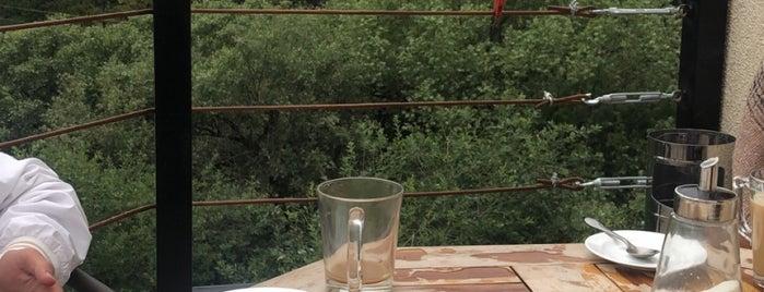 Sno Cafe is one of Lugares favoritos de Michael.