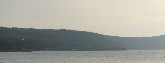 Güzelyalı Halk Plajı is one of Sinem 님이 좋아한 장소.