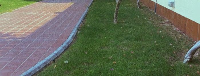 Tamimi Park is one of Khobar.