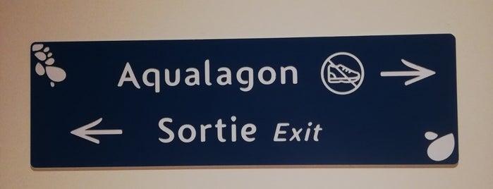 Aqualagon is one of Disneyland Paris.
