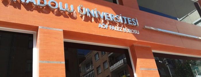 Anadolu Üniversitesi AÖF Bürosu - Falez is one of Alp Gökçe : понравившиеся места.