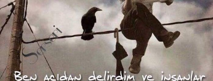 Sarayoğlu Cennet is one of Özge'nin Beğendiği Mekanlar.