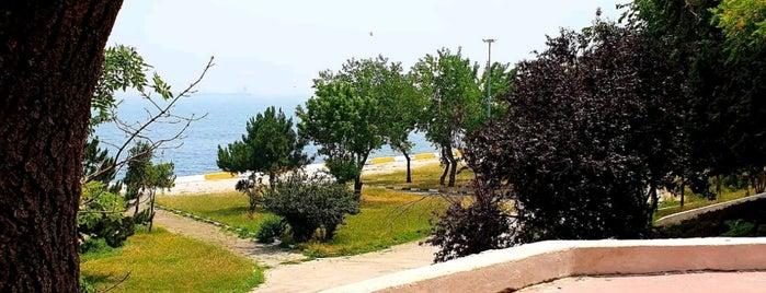 Yeşilyurt is one of Tempat yang Disukai Pelin.