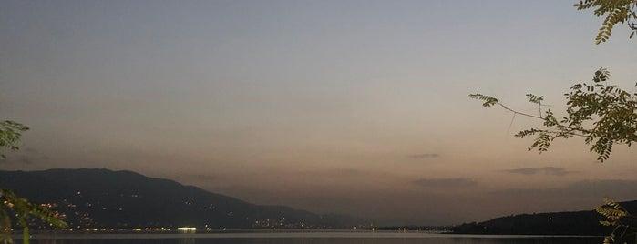 Göle Divan Tesisleri is one of Sakaryanın Kıyısı Köşesi.