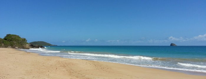 Plage de Cluny is one of Martinique & Guadeloupe.