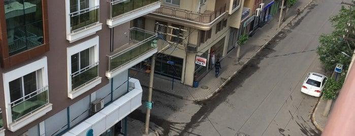 Çınarlı Caddesi is one of themaraton.