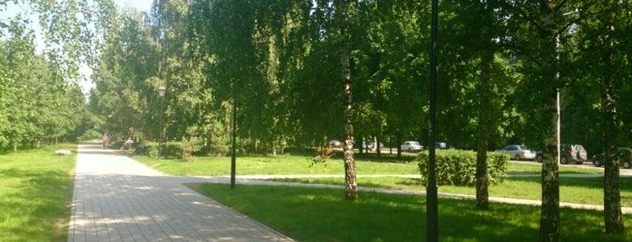 Аллея на Туристской is one of Avdeec : понравившиеся места.