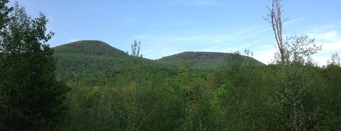 Birch Hill clOister is one of Locais curtidos por Eve.