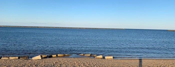 Plum Island Point is one of Newburtport, To-do list.