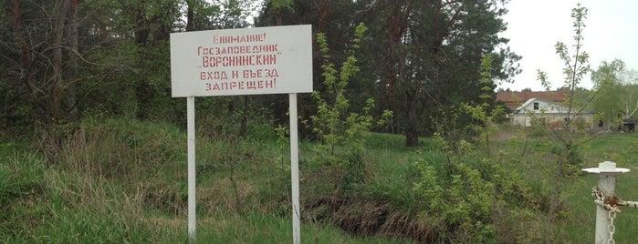 Воронинский заповедник is one of Russia10.