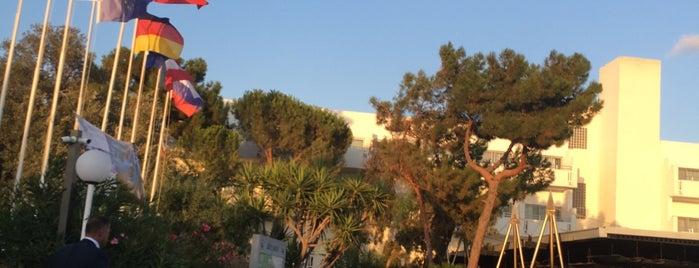 Altın Yunus Resort & Thermal Hotel is one of Cenkerさんのお気に入りスポット.