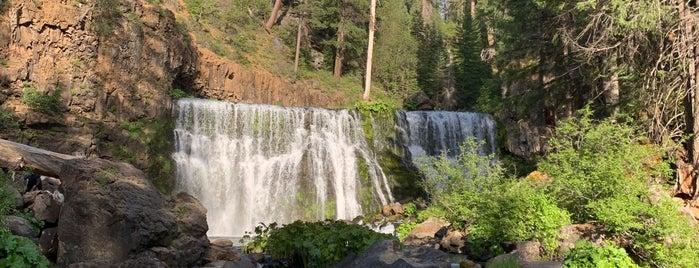 McCloud Falls is one of eM'in Beğendiği Mekanlar.