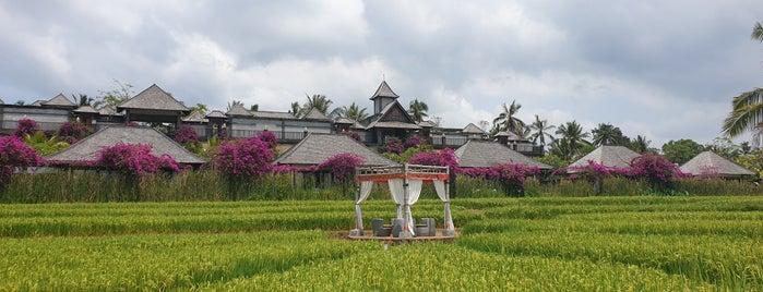 Desa Visesa Ubud is one of Ubud.