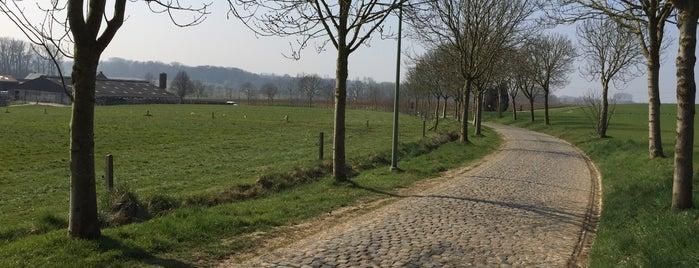 Paddestraat is one of Belgium / Events / Ronde van Vlaanderen 2019.