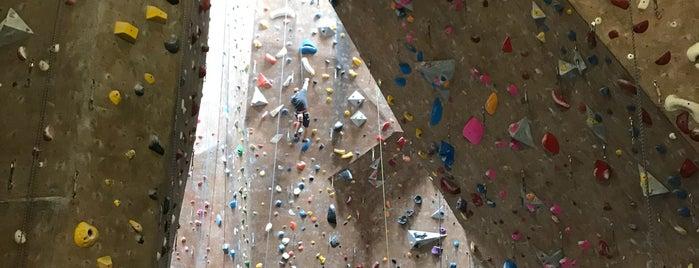 Mesa Rim Climbing and Fitness Center is one of Krista : понравившиеся места.