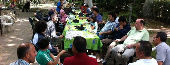 Yeşil Cami Çay Bahçesi is one of Esen : понравившиеся места.