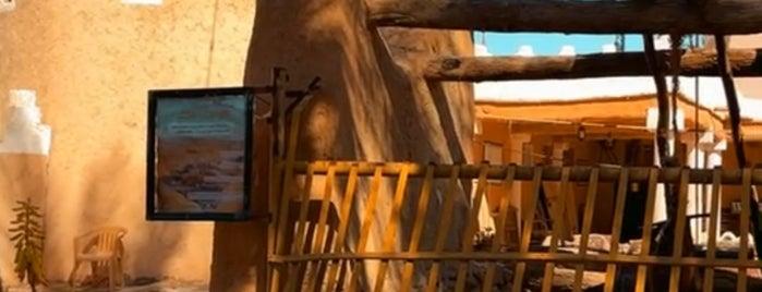 متحف قصر النايف الأثري is one of حايل hail.