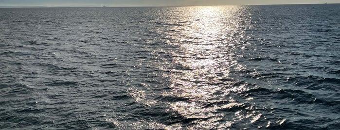 Marmara Denizi is one of Posti che sono piaciuti a Pelin.