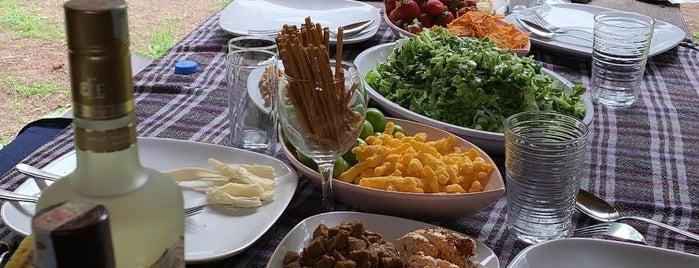 Çam Pınarı Doğa Evleri & Restaurant is one of BoluDüzceAnkara.