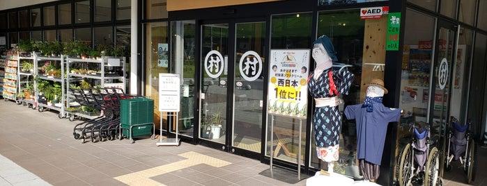 道の駅 お茶の京都 みなみやましろ村 is one of Lugares favoritos de Shigeo.