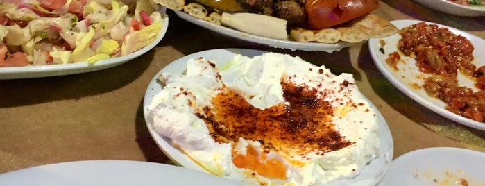 Hadırlı Umut Restaurant is one of Adana.