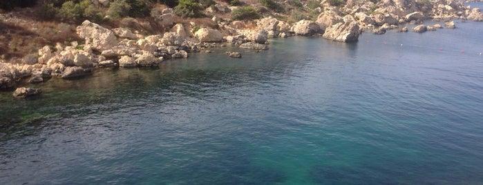 Fekruna Bay is one of Malta.