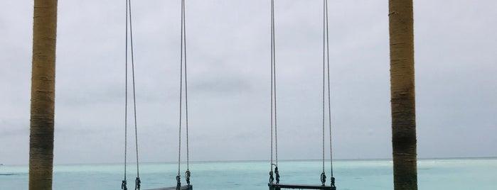 Anantara Dhigu Resort & Spa Maldives is one of Taleb 님이 좋아한 장소.