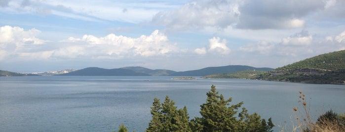 Güvercinlik Koyu is one of Orte, die Safak gefallen.