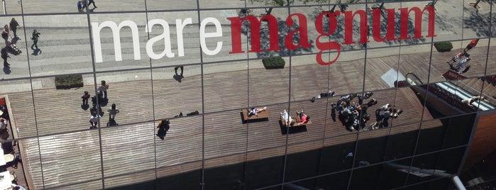 Maremagnum is one of Barcelona Essentials.