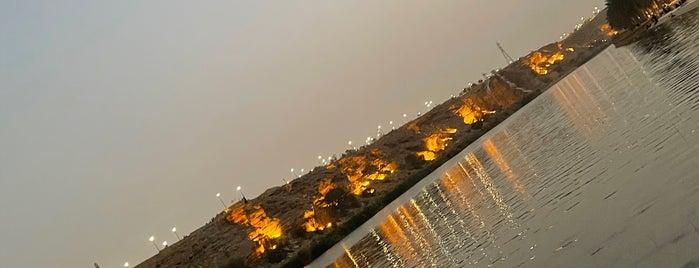 Land of O'HARA is one of Riyadh.