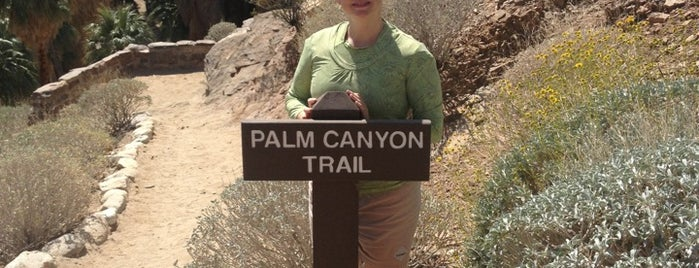 Indian Canyons is one of Palm Springs.